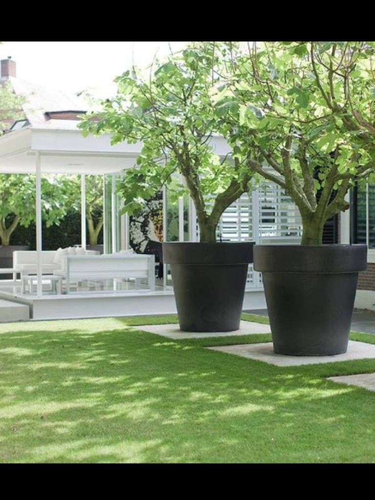 Nothing Says Pow In A Garden Like Oversized Decor The Color And Inside  Measurements 768 X