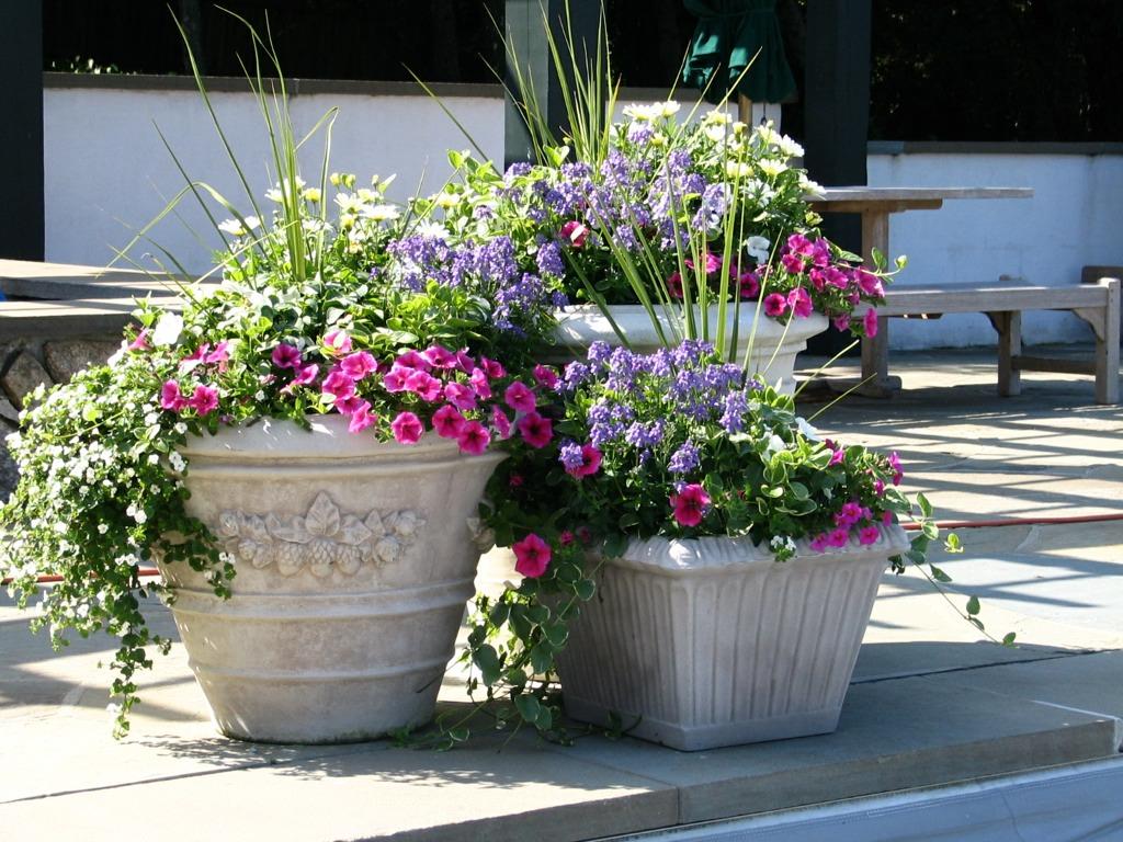 Exceptionnel Patio Flower Pots Sportwholehousefansco Within Size 1024 X 768