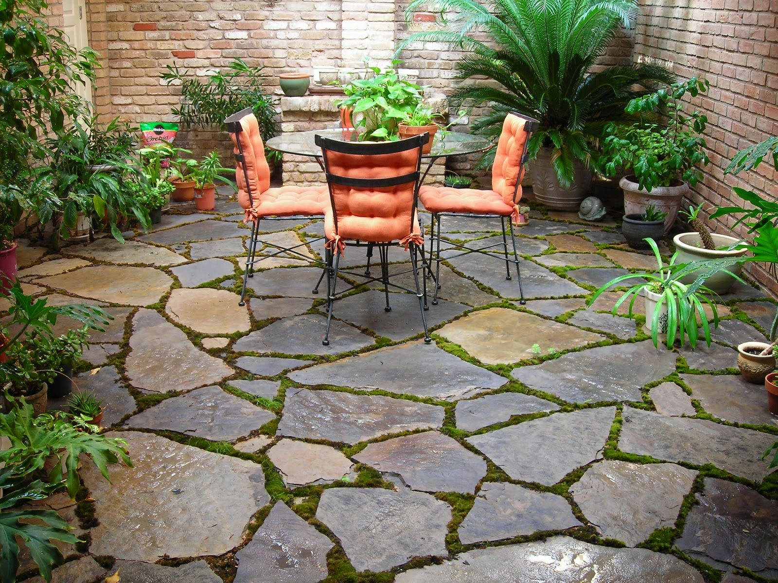 Stone Patio Design Crasstalk Interview Hgtvs Sandra Rinomato Regarding  Sizing 1600 X 1200