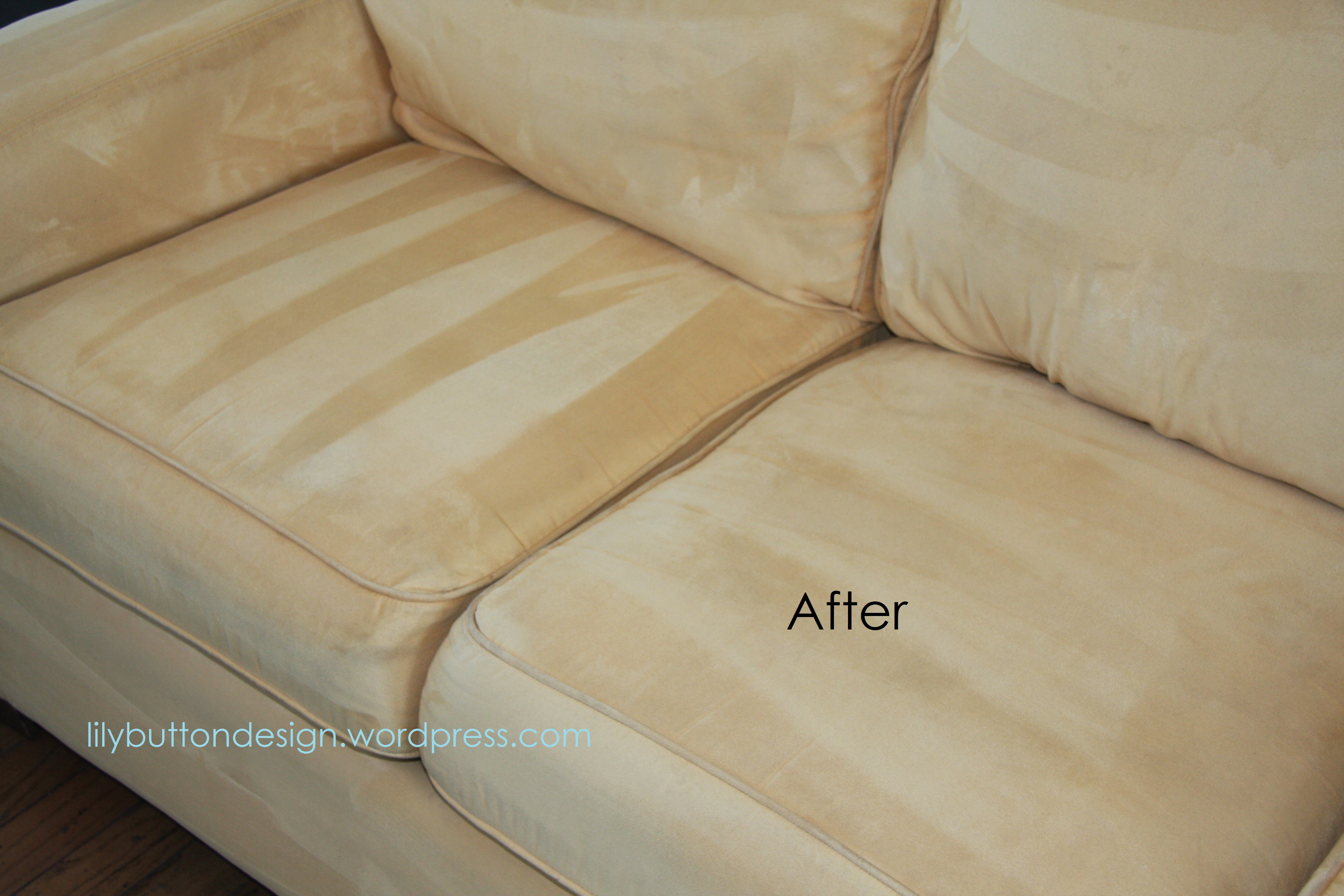 Best Way To Clean Sofa Mycoffeepot pertaining to size 3888 X 2592